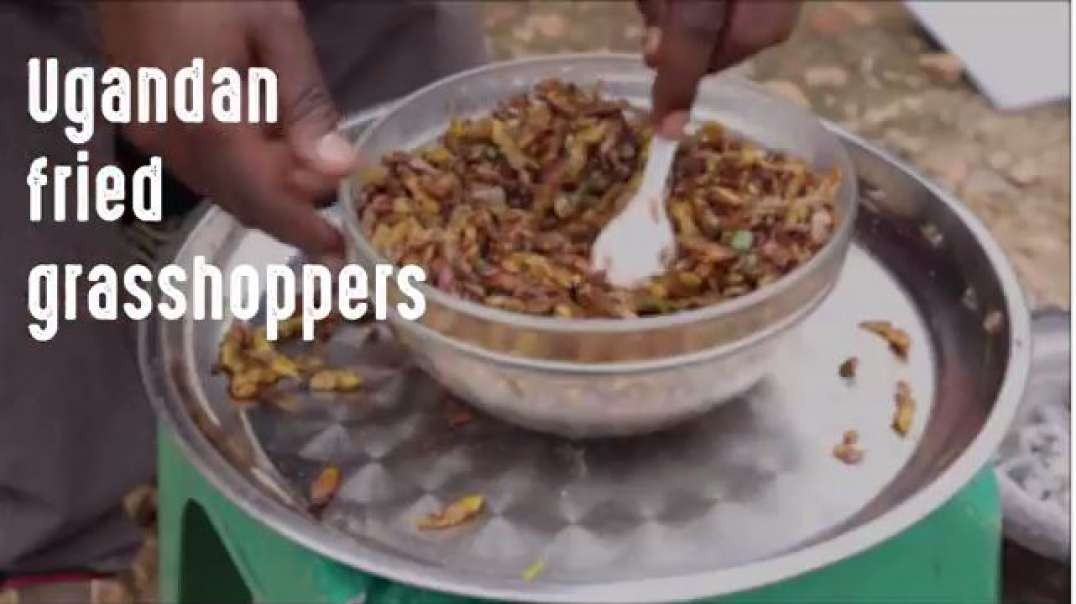 the remote kitchen ep_4 uganda fried grasshoppers wateraid